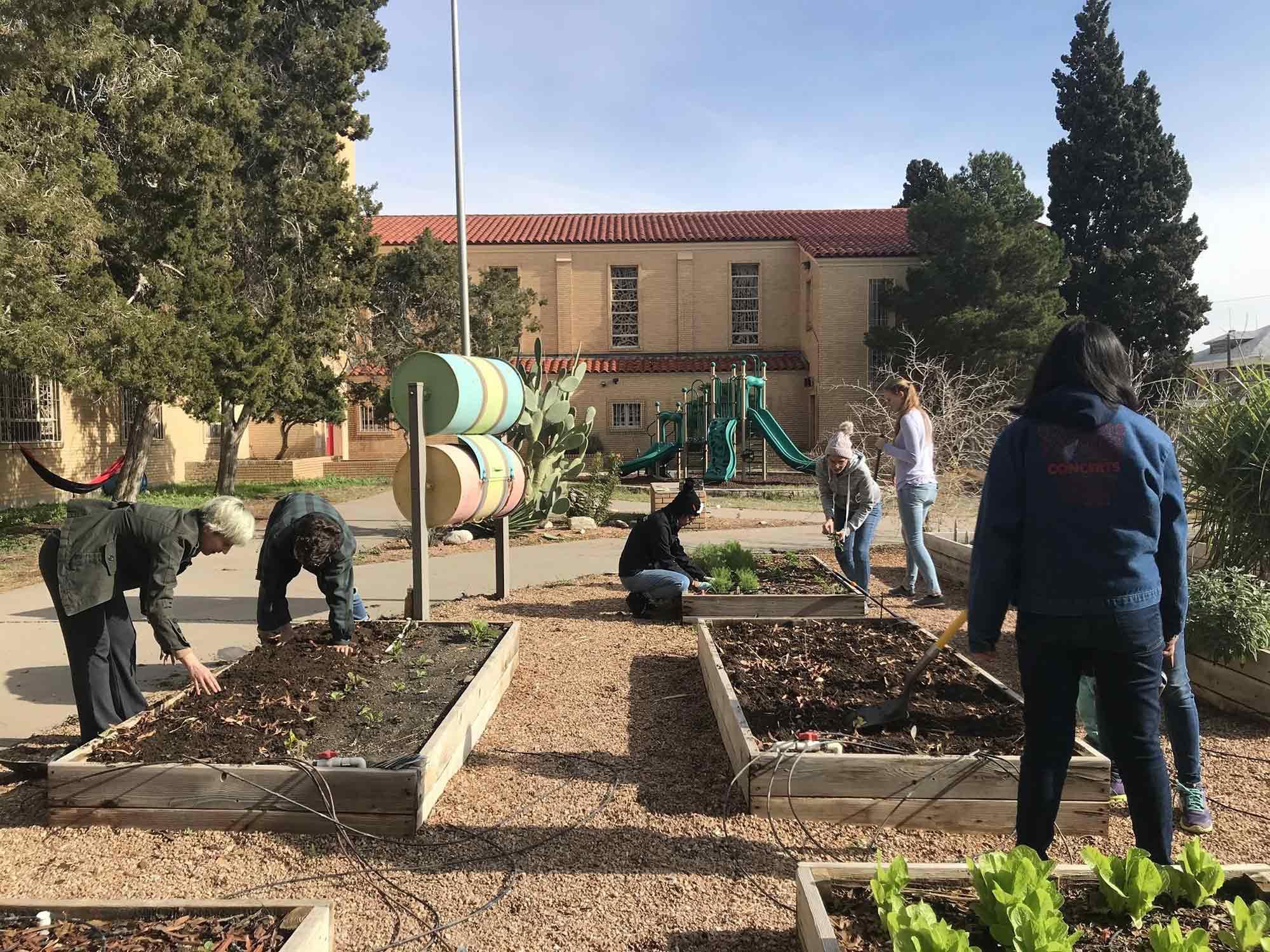 One Grub Community Garden, El Paso, Texas.